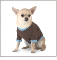 Doggie Ringer T-Shirt Embroidery Blanks For Pets
