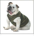 Doggie Tank Top Embroidery Blanks For Pets
