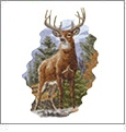 Hautman North American Wildlife Collection 2 Embroidery Designs on a Multi-Format CD-ROM LS0404