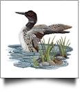 Call of the Loons Embroidery Designs by Amazing Designs on a Multi-Format CD-ROM ADL-27