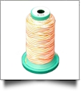 V103 Medley Polyester Embroidery Thread 1000 Meter Spool