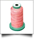 V107 Medley Polyester Embroidery Thread 1000 Meter Spool