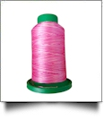 9923 Raspberries & Cream Multicolor Variegated Isacord Embroidery Thread