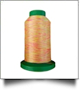 9914 Neon Brights Multicolor Variegated Isacord Embroidery Thread
