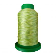 9868 Limeade Multicolor Variegated Isacord Embroidery Thread