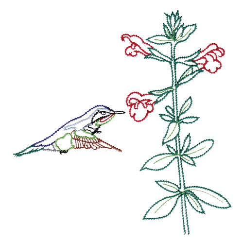 Hummingbirds And Flowers Embroidery Designs By Amazing Designs On A