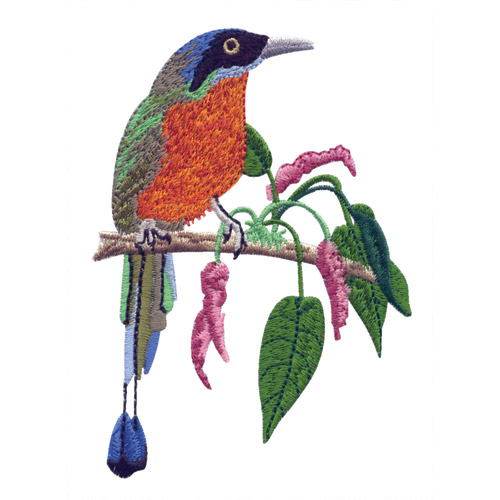 Tropical Birds And Blooms Embroidery Designs By Nancy Zieman For